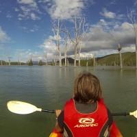 En canoë dans la forêt noyée