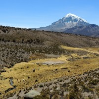 Au loin le volcan Sajama